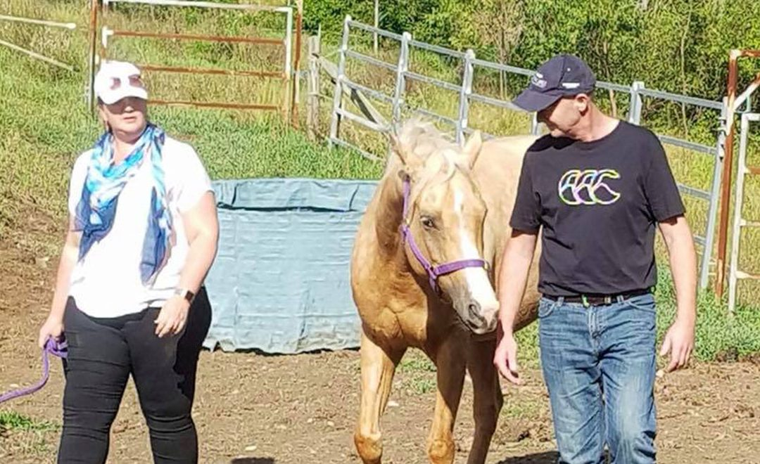 Deloitte executives learn about Leadership from horses